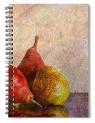 Autumn Trio  Spiral Notebook