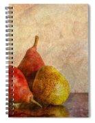 Autumn Trio  II Spiral Notebook