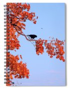Autumn View Through Red Leaves Spiral Notebook