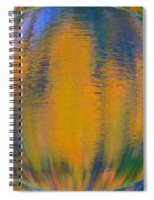 Autumn Vision Reflections Spiral Notebook