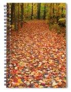 Autumn Walk In Ohio Spiral Notebook
