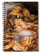 Autumn Water Eddy Spiral Notebook