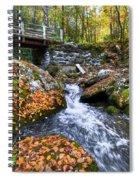 Autumn Waterfall Spiral Notebook