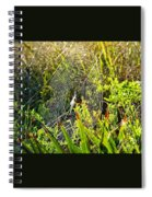 Autumn Web Spiral Notebook