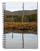 Autumn Wetlands Spiral Notebook