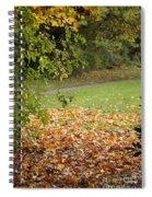 Autumnal 1 Spiral Notebook