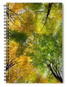 Autumnal Display Spiral Notebook