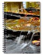 Autumnal Serenity Spiral Notebook