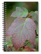Autumn's Arrival Spiral Notebook