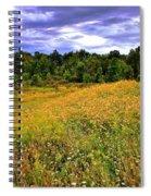 Autumns Brilliance Hdr Spiral Notebook