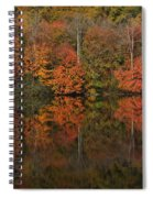 Autumns Design Spiral Notebook
