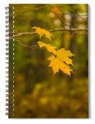Autumns Fast Approach Spiral Notebook