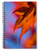 Autumn's Finest Spiral Notebook