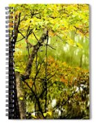 Autumn's First Reflections II Spiral Notebook