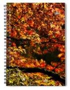 Autumn's Glory Spiral Notebook