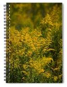 Autumn's Gold 2013 Spiral Notebook