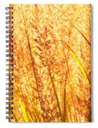 Autumns Passion Spiral Notebook
