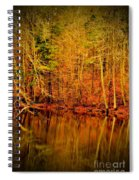 Autumn's Past Spiral Notebook