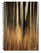 Autumn's Promise 1 Spiral Notebook