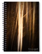 Autumn's Promise 11 Spiral Notebook