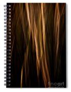 Autumn's Promise 12 Spiral Notebook