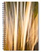 Autumn's Promise 15 Spiral Notebook