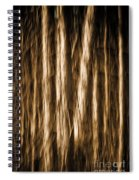 Autumn's Promise 2 Spiral Notebook