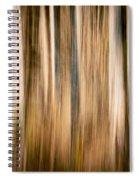 Autumn's Promise 3 Spiral Notebook