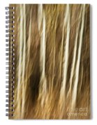 Autumn's Promise 4 Spiral Notebook