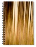 Autumn's Promise 6 Spiral Notebook