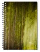 Autumns' Promise 8 Spiral Notebook
