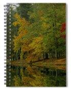Autumns Reflection Spiral Notebook