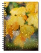Autumns Tears Spiral Notebook