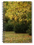 Autumn's Wondrous Colors 4 Spiral Notebook