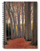 Avenue Of Plain Trees Spiral Notebook