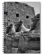 Avenue Of Sphinxes Spiral Notebook