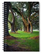 Avenue Of The Oaks On St Simons Island Ga Spiral Notebook