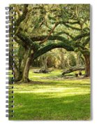 Avery Island Oaks Spiral Notebook