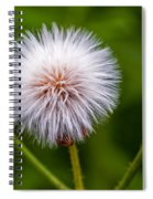 Awaiting The Wind Spiral Notebook