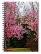 Awakening Dream Spiral Notebook