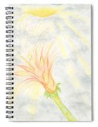 Awakening Spiral Notebook