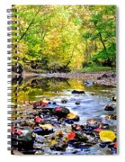 Awesome Autumn  Spiral Notebook