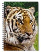 Axl's Portrait Spiral Notebook