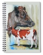 Ayrshire Cattle Spiral Notebook