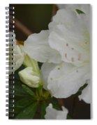 Azalea 14-4 Spiral Notebook