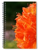 Azalea Profile Spiral Notebook