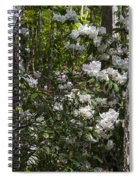 Azaleas In The Trees Spiral Notebook