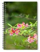 Azalea  Run  By Zina Zinchik Spiral Notebook