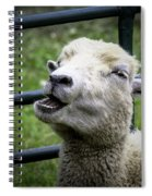 Baa Baa Black Sheep Spiral Notebook