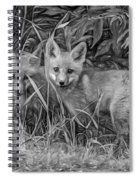 Babes In The Woods 2 - Paint Bw Spiral Notebook